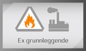 ex_no
